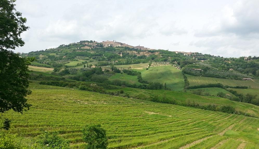 MontepulcianoBlog