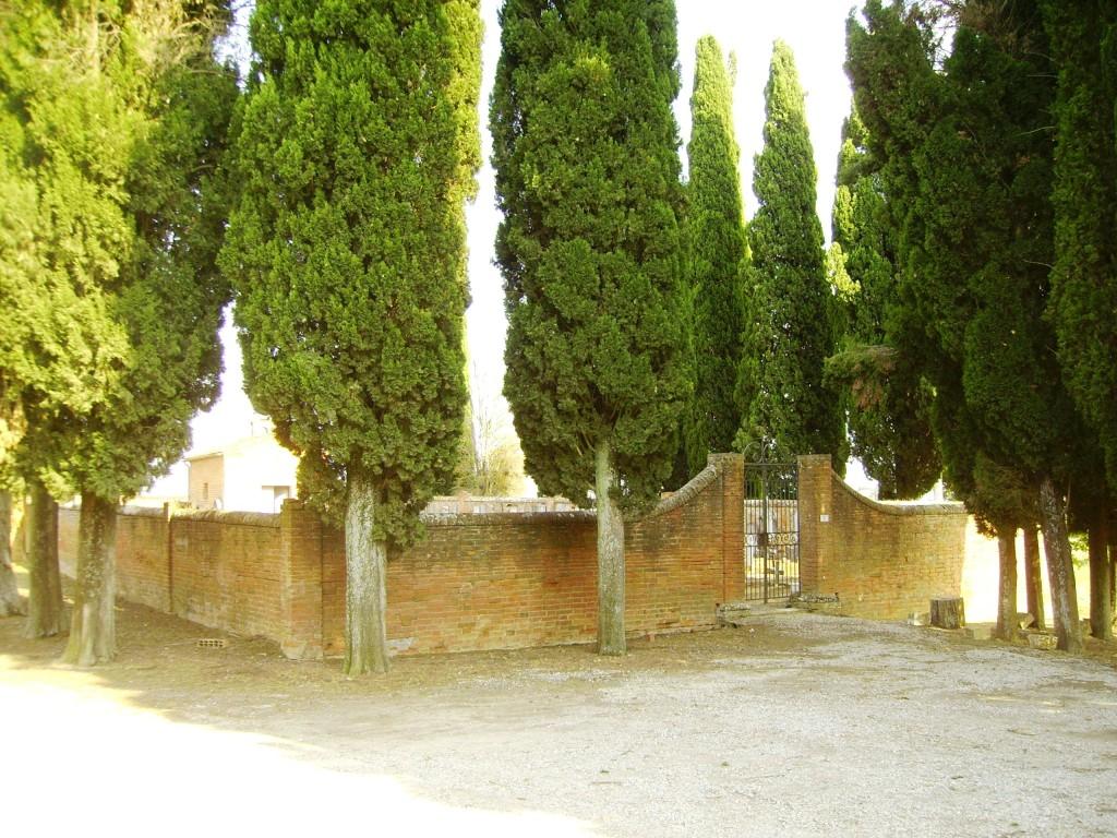 Il cimitero di Argiano