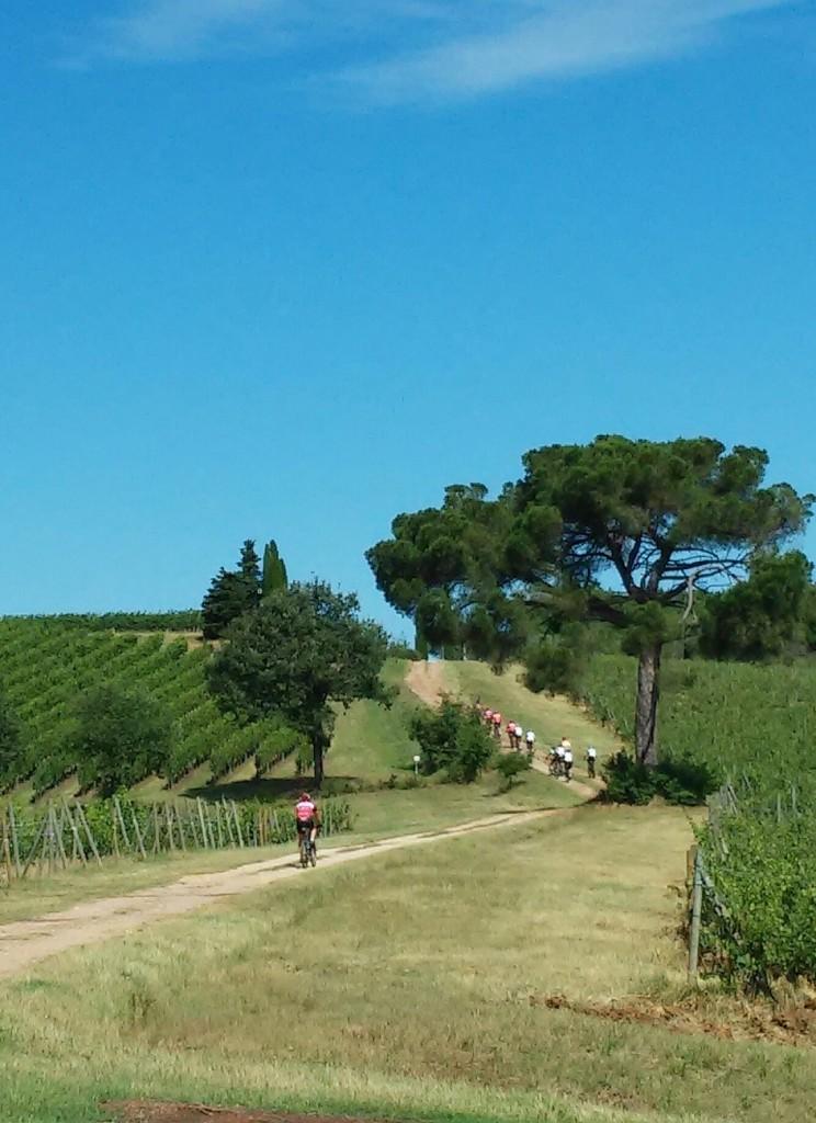 sentiero del nobile - cerro bike