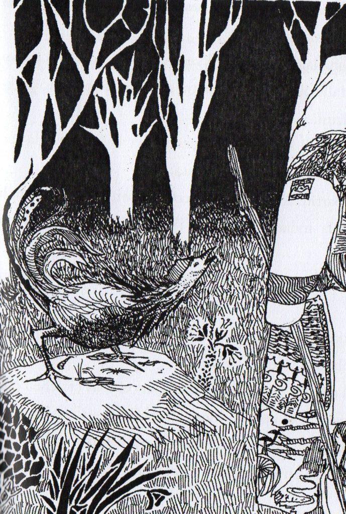 Illustrazione di Carlo Castellani
