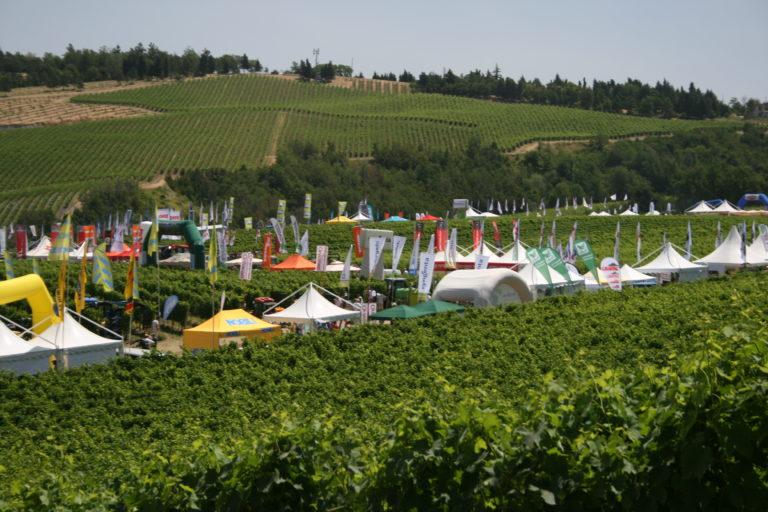Vino e tecnologia: Enovitis in Campo nel cuore del Vino Nobile di Montepulciano